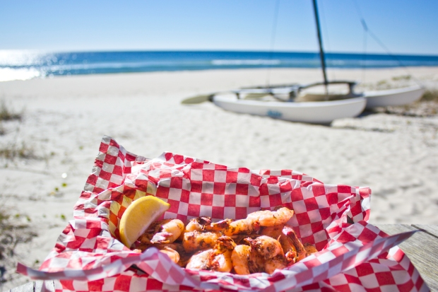 shrimp, gulf of mexico, st george island, florida, seafood